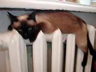 Отопление – основа комфорта русской зимой
