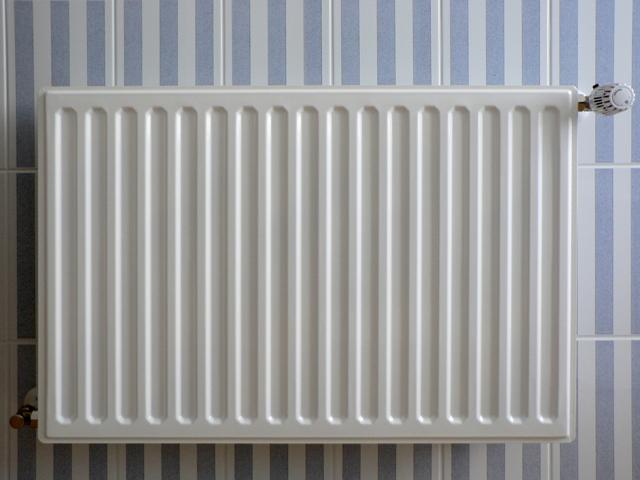 Проблема пластинчатых радиаторов - тонкие стенки. Рано или поздно в них появляются свищи.