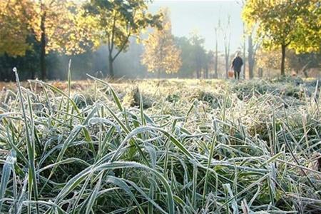 Ранний осенний заморозок. Жители многоквартирных домов мерзнут. Владельцы автономных отопительных систем посмеиваются.