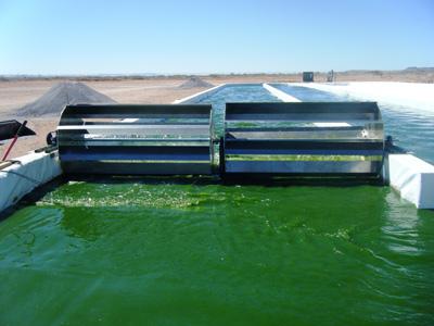 биотопливо из навоза
