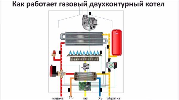 На схеме показано устройство двухконтурного газового котла