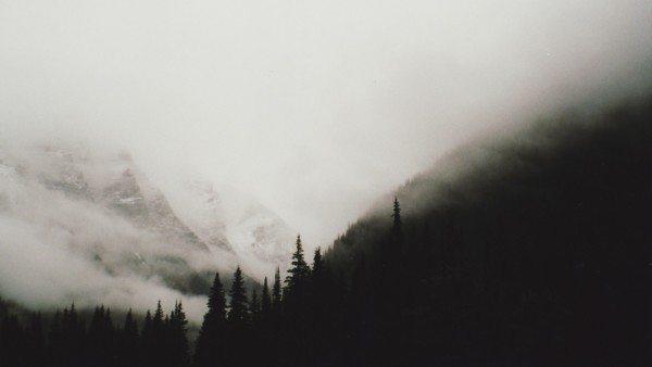 Обильный туман говорит нам о том, что достигнута точка росы и водяной пар, находящийся в воздухе, превратился в капли воды.