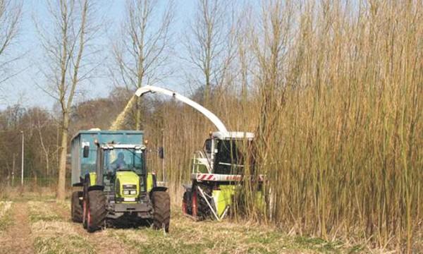 установка по производству биотоплива
